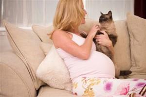 Токсоплазмоз при беременности: как происходит заражение. Опасность, диагностика и профилактика токсоплазмоза при беременности