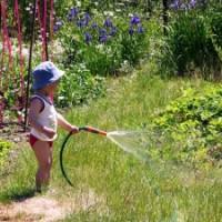 Как организовать летний отдых и оздоровление детей