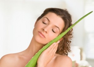 Алоэ при беременности: сок алоэ в нос при насморке во время беременности
