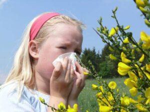 Аллергия на пыльцу у ребенка: лечение, профилактика. Как распознать и что делать