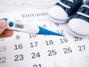 Календарь овуляции: рассчитать день зачатия