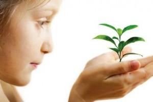 Как привить ребенку любовь к окружающей среде