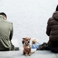 Супружеская измена: есть ли выход?